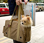 Ultrabark lapdog bag