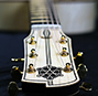 The Carolan guitar