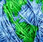 Sustainability, hope, and designerly action in the Anthropocene