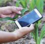 What does AI mean for smallholder farmers? A proposal for farmer-centered AI research